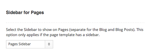 Page Options Theme Options